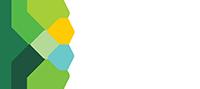 SIIA Logo rgb logo_FISD LG-reverse